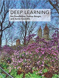 Deep learning: adaptive computation and machine learning