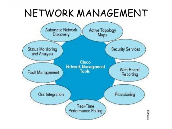Network Management and Development