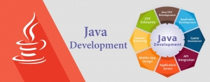 Enterpise Development with JAVA